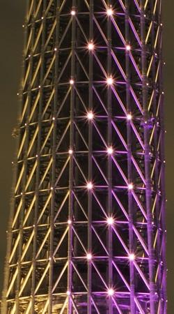 東京スカイツリーの光