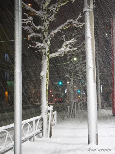 雪の積もる歩道