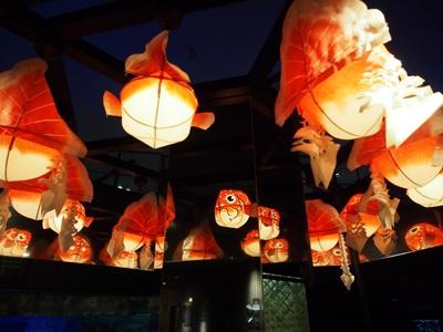 東京金魚ワンダーランド2018の金魚ちょうちん
