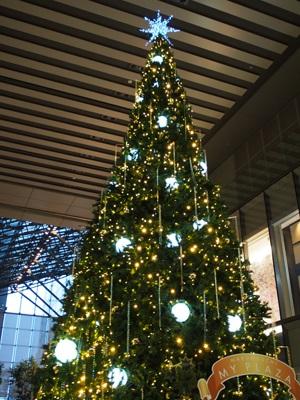 丸の内 MY PLAZAのクリスマスツリー