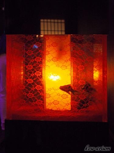 アートアクアリウムの水槽