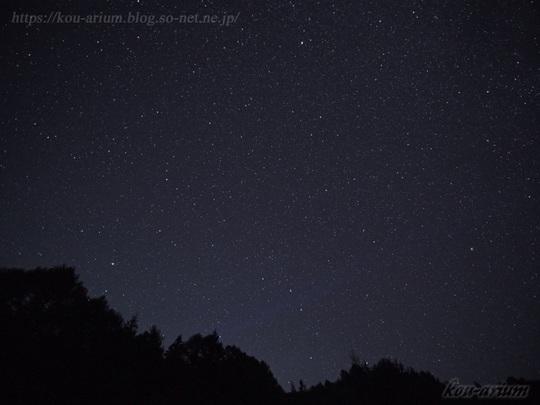 ヘブンスそのはらから見た夜空